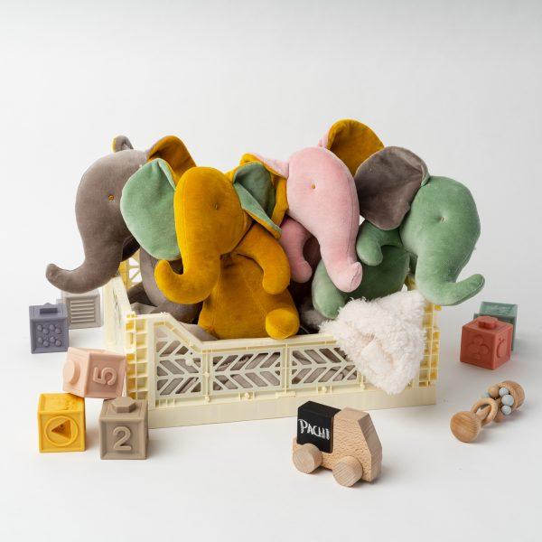 Pachi and friends de toutes les couleurs dans boite